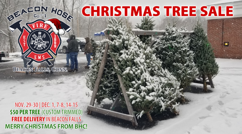 BHC Christmas Tree Sale Tradition Continues